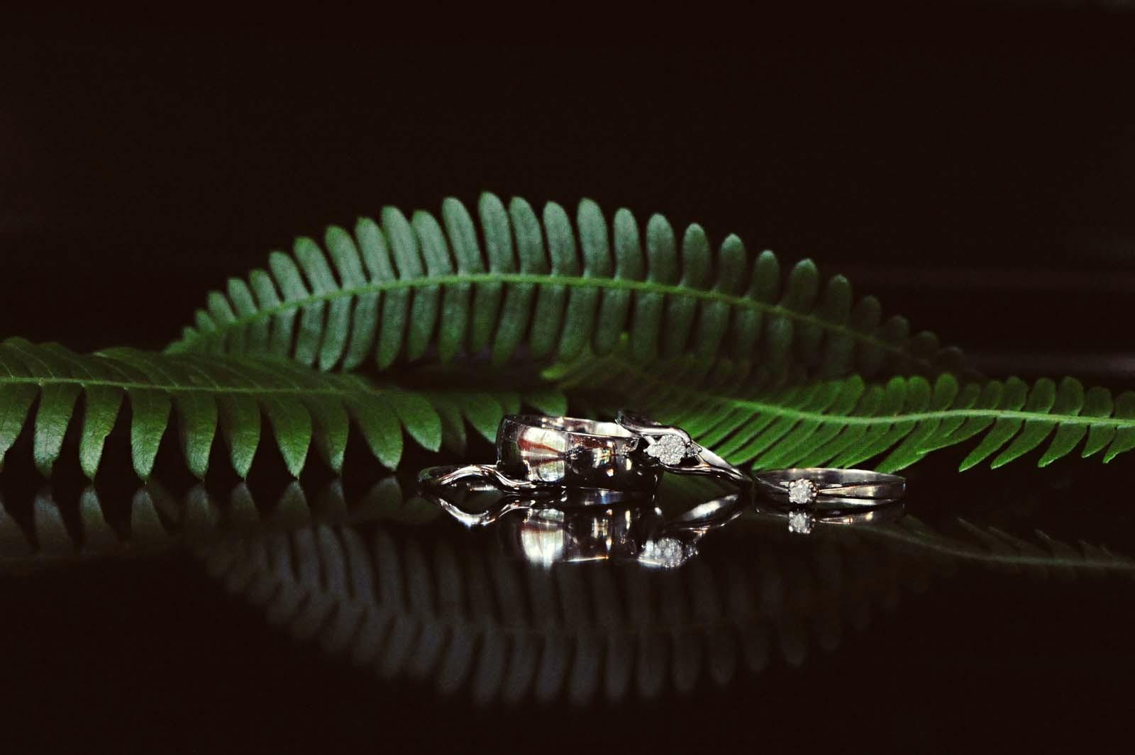 Erin Wallis Photography_Wedding Rings